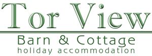 Tor View Logo